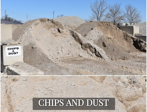 Chips & Dust